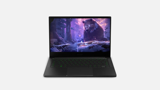 A Razer Blade Stealth 13 laptop.